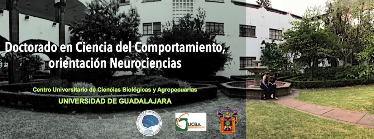 banner doctorado